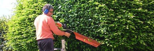 jardinier paysagiste mennecy paysages sans fronti res